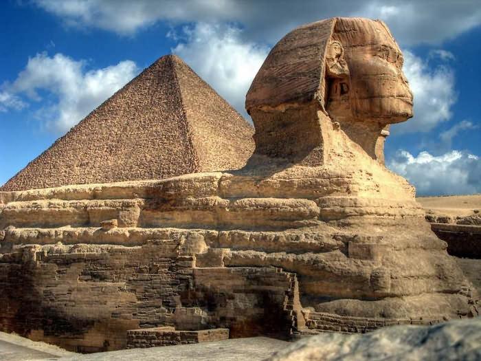 обшивки загадки египта фото дерзкие распущенные